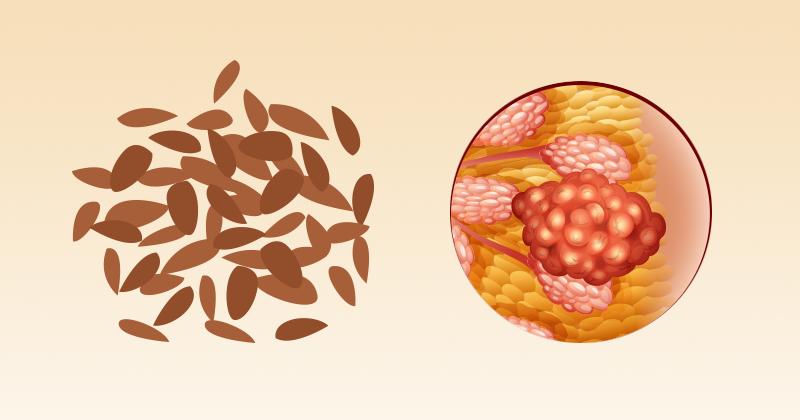 זרעי-פשתן למניעת סרטן השד