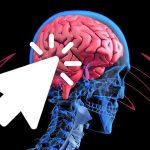 4 רעלים אלה פוגעים במוחכם ועליכם להימנע מהם בכל מחיר!
