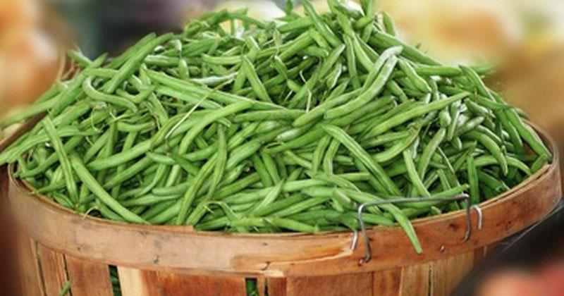 שעועית ירוקה