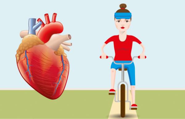 רכיבה על אופניים – 10 עובדות שמעולם לא ידעתם