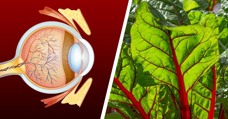 סלט טעים לחיזוק הראייה ולניקוי רעלים מכל מערכות הגוף