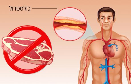 מה קורה לגוף שלכם כשאתם מפסיקים לאכול בשר?