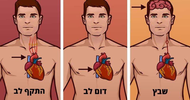 אלה הם ההבדלים בין התקף לב, דום לב ושבץ מוחי שכולם חייבים לדעת