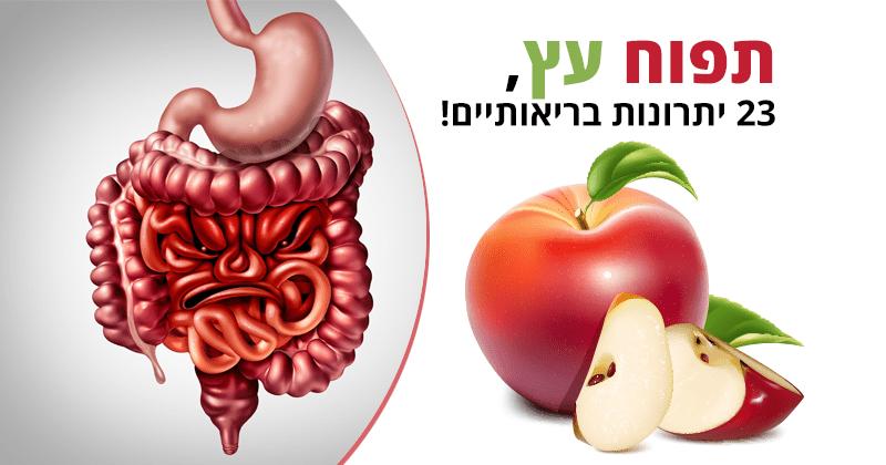 תפוח עץ, 23 יתרונות בריאותיים, ערך תזונתי וזנים נפוצים