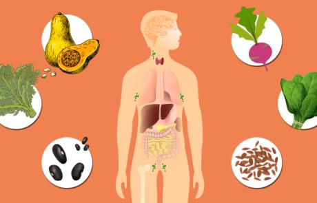 20 המזונות מהצומח העשירים ביותר בסידן