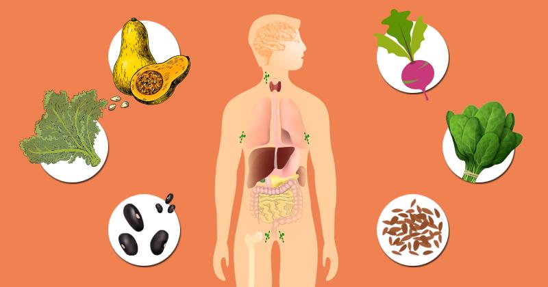 20 המזונות מהצומח העשירים ביותר ב-סידן
