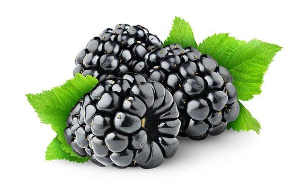 פטל שחור, 15 עובדות בריאותיות על הפרי הטעים הזה