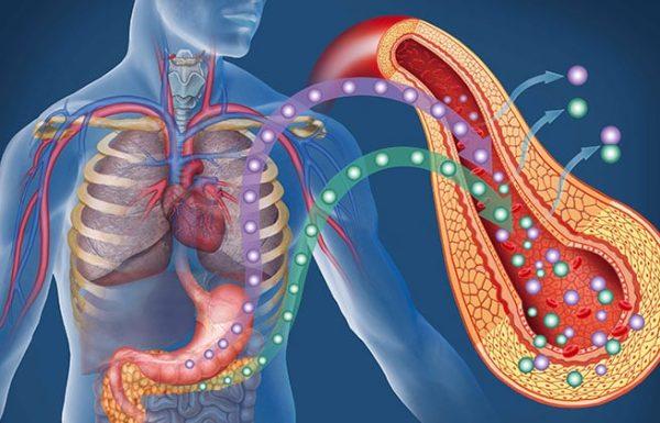 7 צעדים יעילים שבעזרתם תוכלו למנוע סוכרת מסוג 2